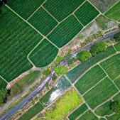 agriculture-PRISE-DE-VUES-PAR-DRONE-VISUAL-SEQUENCE