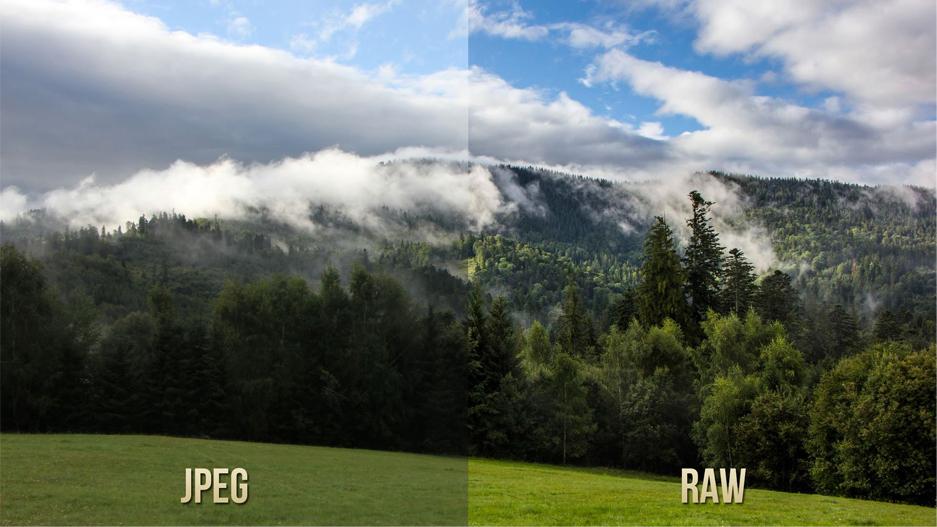 Différences entre le fichier JPEG et le fichier RAW (source : Know Techie https://knowtechie.com/difference-raw-jpeg-file-format/)